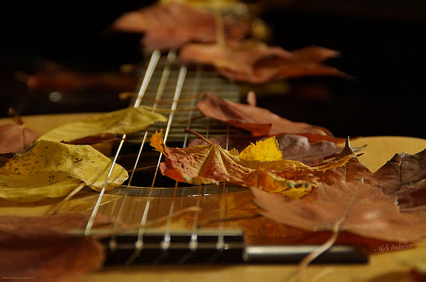 В Ялте пройдет фестиваль авторской песни «Осенняя Ялта».
