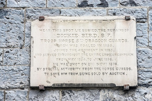 In Memory Of Dickie Bird A Horse That Served In The Crimean War