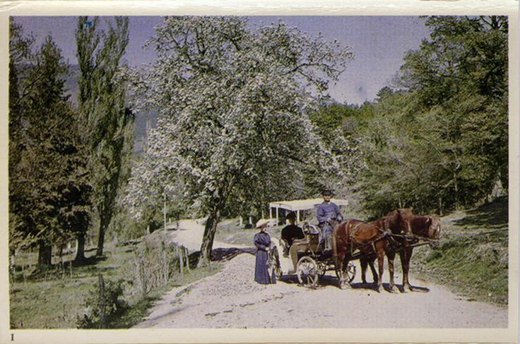 Весна в Крыму, 1910 год.