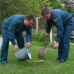 Крымские спасатели высадили 1 тыс. деревьев