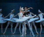 Театр «Русский балет» покажет в Крыму «Лебединое озеро»