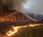 Спасатели предупредили о чрезвычайной пожарной опасности в Крыму