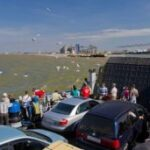 Переправы через Керченский пролив ожидают 2 тысячи автомобилей