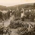 Крым в старинных фотографиях. Часть 1.