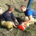 В Алуште спасатели вытянули из колодца жеребенка