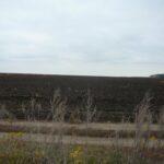 Треть земли сельскохозяйственного назначения в Крыму оказалась без документов