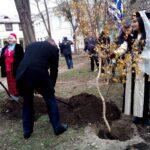 В Крыму впервые состоялось празднование Дня народного единства