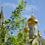 Премьер сделал в Крыму Троицу выходным днем
