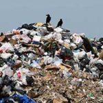 В Симферополе со стихийных свалок вывезли более 150 кубометров мусора