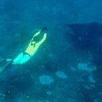 Под Судаком соберутся подводные охотники и фридайверы