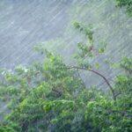Сегодня и завтра в Крыму ожидаются ливни и грозы