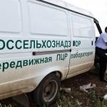 В Крыму уничтожили первые 4 тонны санкционных товаров из Европы