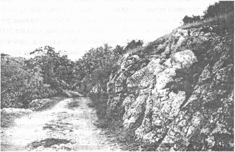 «Римская дорога»