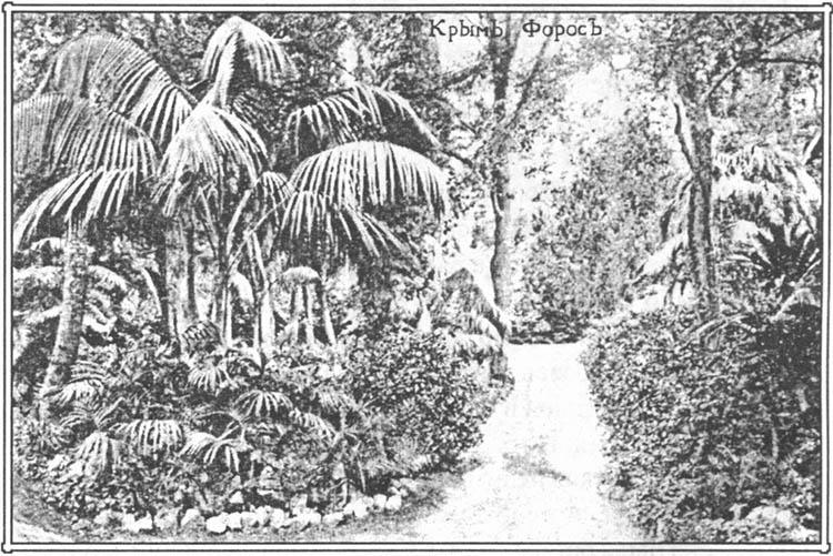 Уголок парка. 1917 г.