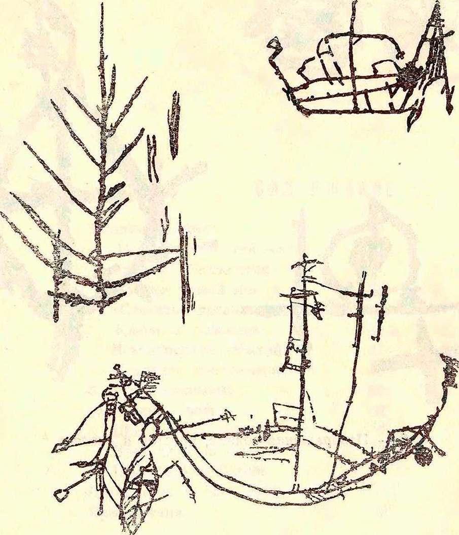 Наскальные рисунки деревьев, кораблей и человеческой фигуры
