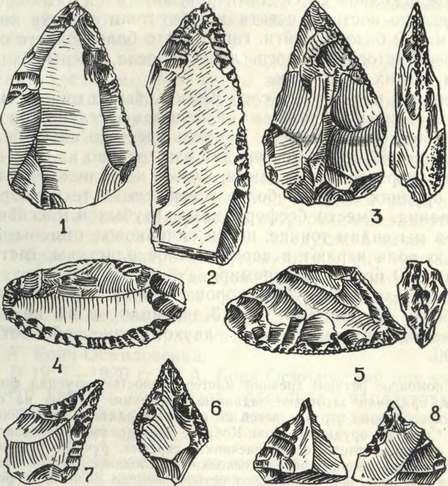 Мустьерские орудия с односторонней обработкой: 1 — остроконечник со стоянки Мустье (Франция); 2 — остроконечник из Киик-Кобы (верхний слон); 3 — остроконечник из Чокурчи; 4 — скребло со стоянки Мустье; 5, 6 — скребло и миниатюрный наконечник из Чокурчи; 7, 8 — проколки из Мустье и Шайтан-Кобы
