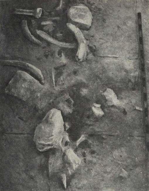pic1-8