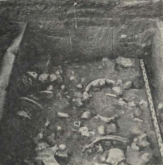 Раскоп местонахождения Красная балка