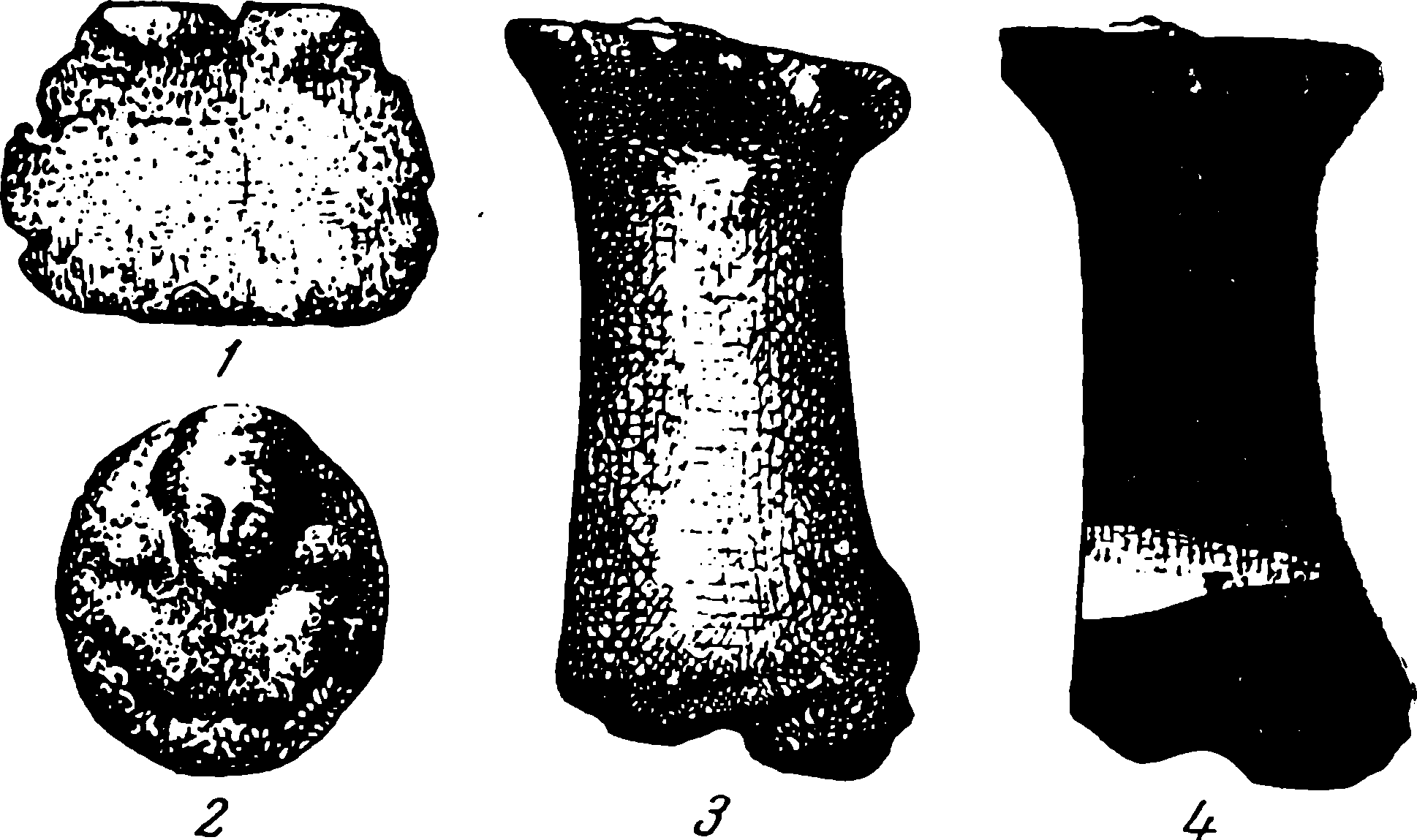 ap-16
