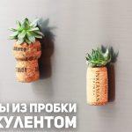 Магниты из пробки с суккулентом / DIY
