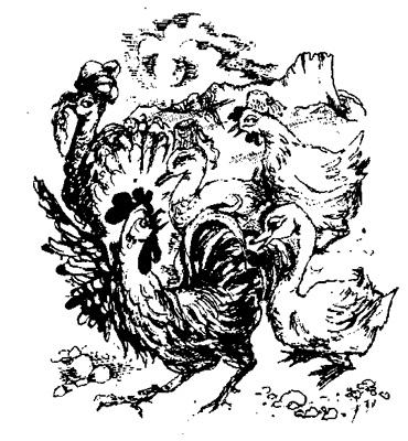 Сказка о хаджи Тильки и правоверных пилигримах
