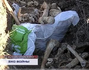 В полях под Балаклавой прямо под открытым небом лежат человеческие кости из разрытых черными археологами могил.
