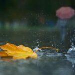 На неделе в Крыму будет тепло и дождливо