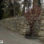 В Севастополе появилось «Дерево влюбленных»