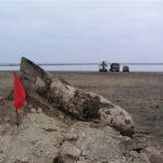 С начала года в Крыму саперы МЧС уничтожили 1,5 тыс. боеприпасов