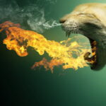 Причиной пожара на трансформаторе в Симферополе стала кошка