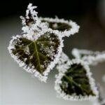 Завтра в Крыму резко похолодает