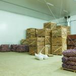 Россельхознадзор вернул из Крыма на Украину 850 тонн овощей и фруктов