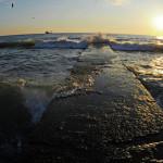 Минэкологии: экосистема Черного моря страдает из-за блокады Крыма