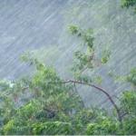 Погода Ураган Ветер Дождь