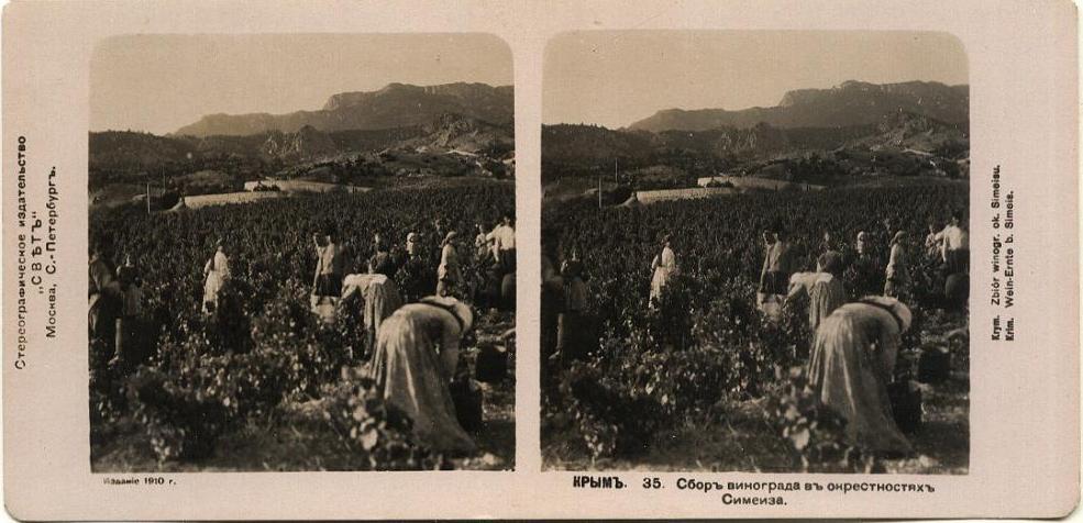 Стереопара виноград Симеиз