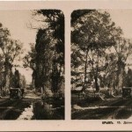 Долина реки Качи. Стереопара. Крым. 1910 год.