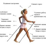 В воскресенье, 5 марта в Университетском (Воронцовском) парке будет проведен мастер класс по скандинавской ходьбе.
